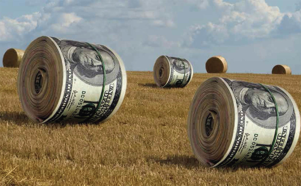 Interest Rates for Farm Credit